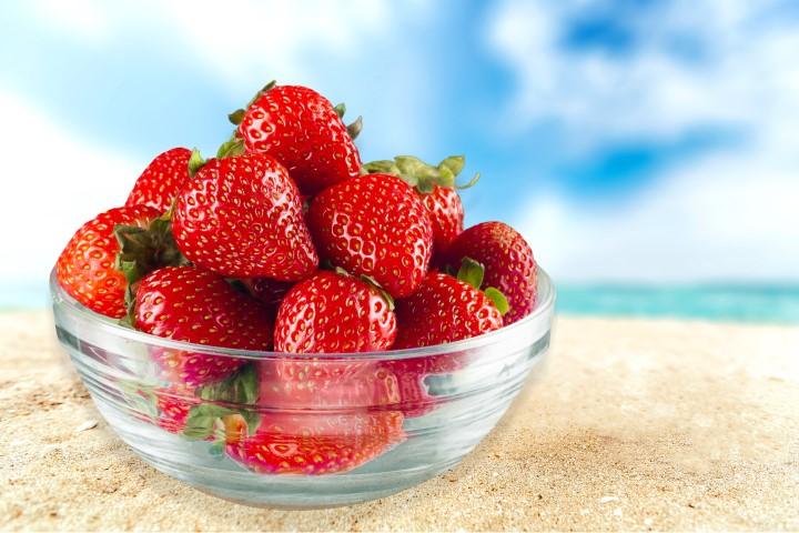 משלוח פירות גם בימי החורף