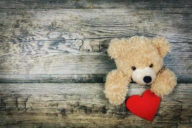 עדן דובים – המקום לקנות דובי לחברה