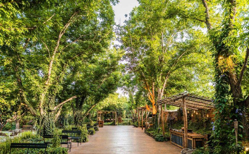 גן אירועים בטבע – חתונה בטבע שלכם